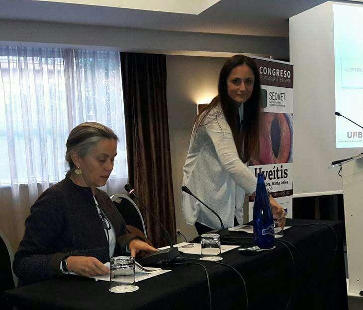 """NEUROOFTALMOLOGÍA"": TEMA DEL VII CONGRESO 2018 DE SEOVET A CARGO DE ELSA BELTRÁN"