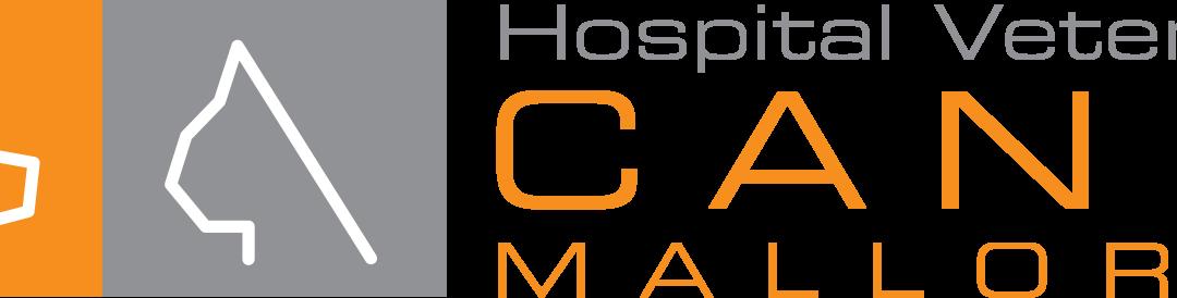 Internado Oftalmologia Hospital Veterinario Canis (Mallorca).
