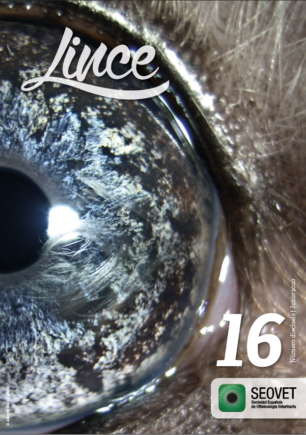 Lince 16